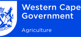 Western Cape Government Jobs Careers Apprenticeships
