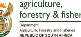 Dept of Agriculture, Forestry & Fisheries Bursaries 2015