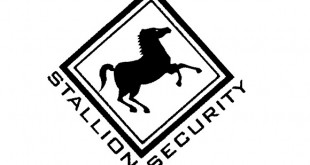 Stallion Security jobs careers vacancies learnerships in south africa