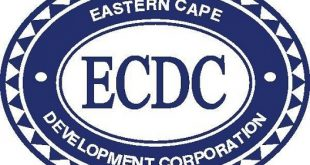 ecdc careers jobs internships vacancies graduate programme learnerships
