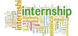 TIPS internship Jobs 2014