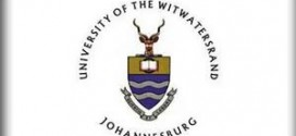 tutorships jobs at university of witwatersrand