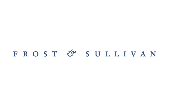 Frost and Sullivan Internships Jobs Careers Vacancies Learnerships in SA