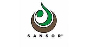 sansor careers jobs vacancies internships learnerships graduate programme